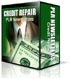 credit repair PLR newsletters