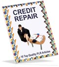 Credit Repair PLR articles for you